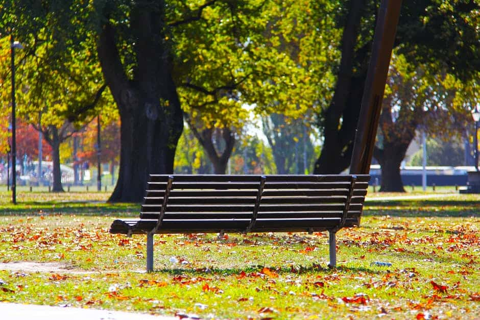 Bench under the sunlight in a park